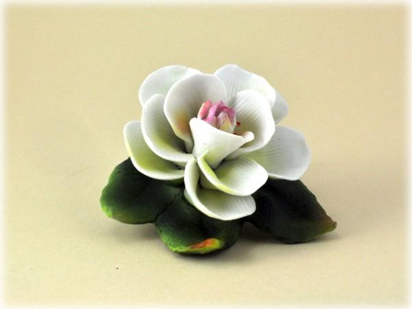 Porzellan Blume mit gelb-rosaner Blüte