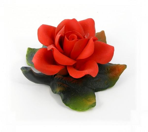 Porzellan Blume, Blüte rote Rose