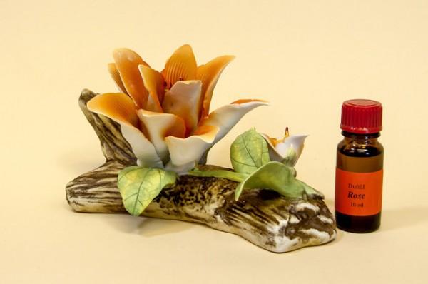 Porzellan Blume, orange Blüte mit einer Flasche Duftöl