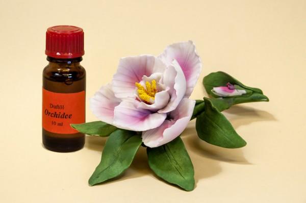 Porzellan Blume, Blüte rosa mit einer Flasche Duftöl