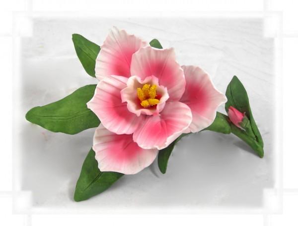 Porzellan Blume mit rosaner Blüte
